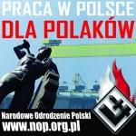 """""""Gazeta Wyborcza"""": Postulat pracy dla Polaków w Polsce to hańba."""